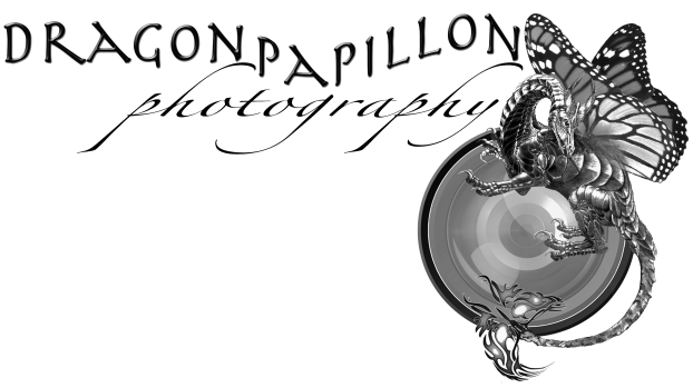 Dragon Papillon Photography Logo